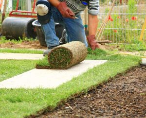 Rasen verlegen Gartengestaltung